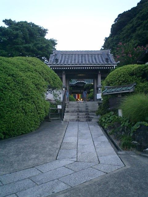 1-02)鎌倉市大町「安養院」山門。いつもより30分くらい遅いので、まあまあの明るさで撮れた。.JPG